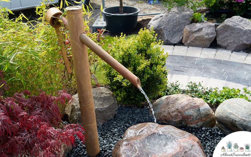 landscaping idea with cheap water feature